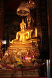 Buddha statues in the temple, Bangkok, Thailand Royalty Free Stock Image