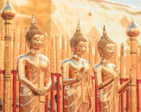 Buddha statues at the temple Stock Images