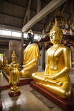 Buddha statues in temples Ayuttaya royalty free stock photos