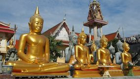 Buddha statues at Thai temple stock video footage