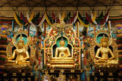 Buddha statues in a Tibetan monastery Royalty Free Stock Photo