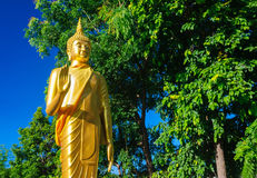 Buddha statues at Wat Doi Kham stock image