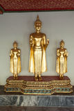 Buddha statues in the Wat Pho temple Stock Photography