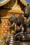 Buddha statues,Wat Phrathat Doi Suthep. A row of bronze Buddha statues at the historic Wat Phrathat Doi Suthep temple.  Chiang Mai, Thailand Royalty Free Stock Photo