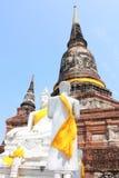 Buddha status och pagoda Arkivfoto