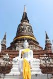 Buddha status och pagoda, ayutthaya Arkivbild