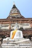 Buddha status och pagodaen Arkivbild
