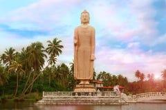 buddha statuy kamień fotografia royalty free