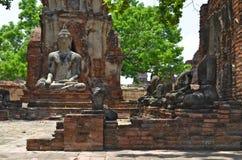 Buddha statuy przy Watem Maha Który w Ayutthaya Fotografia Royalty Free