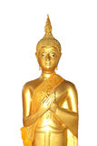 Buddha statuy tła biały isolare Zdjęcie Stock