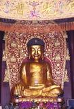 buddha staty, staty av Sakyamuni Royaltyfria Bilder