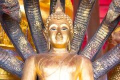 buddha staty thailand Royaltyfri Bild