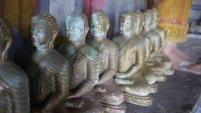 8 buddha statyer i brons Royaltyfria Bilder