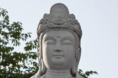 buddha statysten Royaltyfri Bild