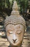 Buddha stawia czoło Fotografia Royalty Free