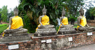 Buddha stone statues dressed in yellow in Ayutthaya Thailand royalty free stock photo