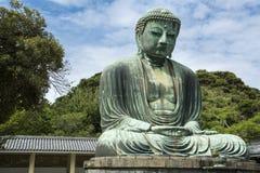 buddha stora kamakura Fotografering för Bildbyråer