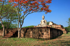 The Buddha , sukhothai Royalty Free Stock Photo