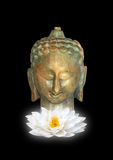 Buddha, Symbol of Purity stock photo