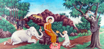 Buddha tames the mad elephant Stock Image