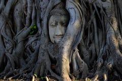 Buddha-Tempel 1 Stockfotografie