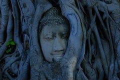 Buddha-Tempel 1 Stockbild