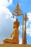 buddha tempel thailand Royaltyfri Fotografi