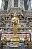 Buddha in the Temple in bangkog views Stock Image
