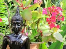 buddha trädgård Arkivfoton