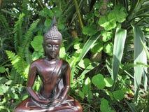 buddha trädgård Royaltyfri Fotografi