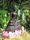 buddha trädgård Royaltyfria Bilder