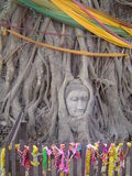 Buddha in a tree. Holy buddha in a holy tree. Ayuttaya in Thailand is the scene of this unworly image Stock Photography
