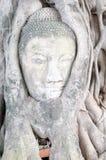 buddha twarz s Obraz Royalty Free