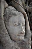 buddha twarzy wizerunku ruina Zdjęcia Stock
