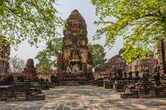 Buddha in una città demolita del tempio di Ayutthaya Tailandia Immagine Stock
