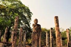 Buddha und Säulen in Polonnaruwa, Sri Lanka Lizenzfreies Stockfoto