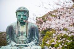 Buddha und Sakura Tree Lizenzfreies Stockfoto
