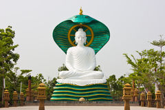 Buddha under big snake Stock Photography