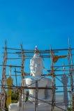 Buddha is under development Stock Photos