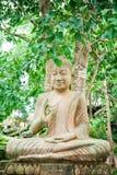 Buddha unter Baum Stockfotos