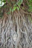 Buddha vänder mot Arkivbild