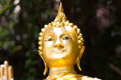 Buddha in valley. Gold color Sculpture Stock Photos
