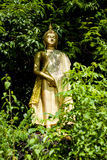 Buddha in valley. Gold color Sculpture royalty free stock images