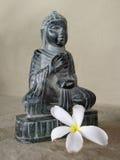 buddha władyka Zdjęcie Royalty Free