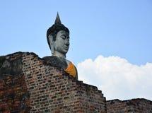Buddha w Ayutthaya Tajlandia Obraz Stock