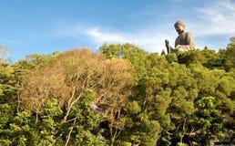 Buddha w lesie Zdjęcie Stock