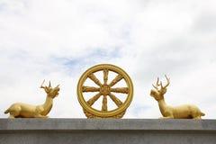 Buddha-Wagenrad stockfoto