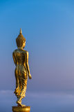 Buddha walk in paradise Stock Images