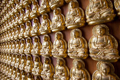 Buddha on wall Royalty Free Stock Photo
