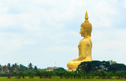 BUDDHA at WAT MUANG Stock Photo